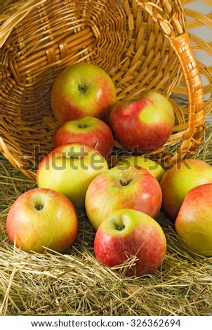 image of ripe apples in inverted basket close-up - stock photo