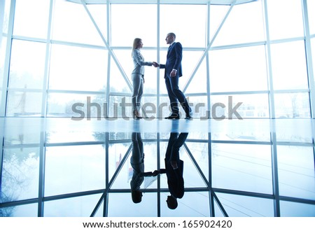Image of successful businessman and businesswoman handshaking after striking deal on background of window - stock photo