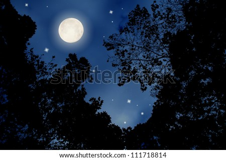 image of the beautiful full moon night - stock photo