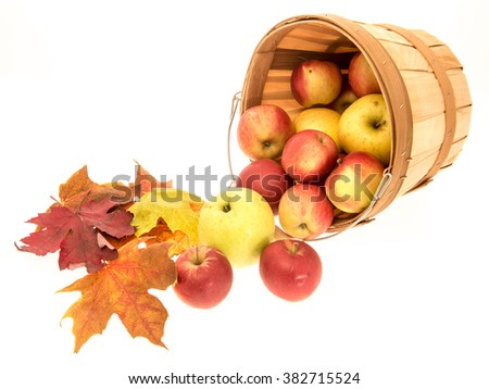 Image of things associated with, autumn, harvest and holidays for the time of year. - stock photo
