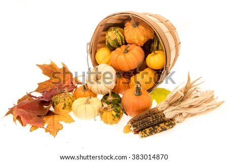 Image of things assoiciated with, autumn, harvest and holidays for the time of year. - stock photo