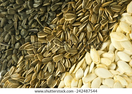 Image of various seeds - stock photo