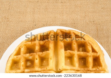 Image of waffle in white dish on brown sack background