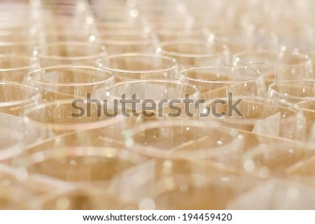image of wine glasses row on light colored background - stock photo