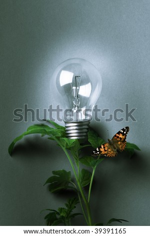 Images of the growing light bulb on a gray background - stock photo