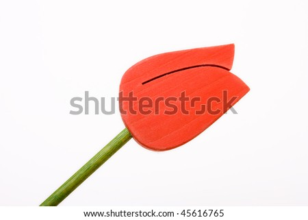 Imitation red Wooden Tulip isolated against white background.