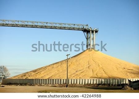 immense pile of corn from bumper crop