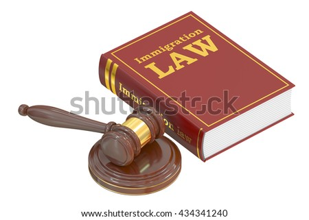 Immigration Law concept with gavel. 3D rendering - stock photo