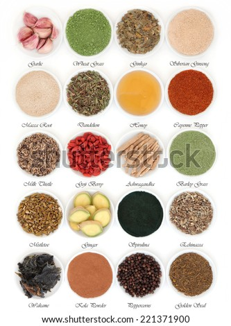 Immune boosting super food selection in porcelain dishes over white background with titles. - stock photo