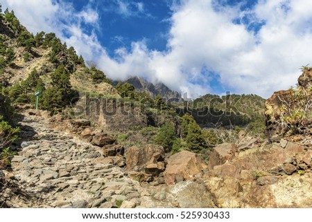 "Impressive canyon of  fear ""Barranco de Las Angustias"" at viewpoint Estrechura  in La Palma canary islands."