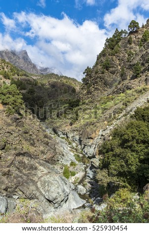 "Impressive canyon of  fear ""Barranco de Las Angustias"" in La Palma canary islands."