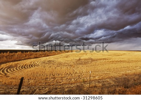 Improbable thundercloud above a field after harvesting