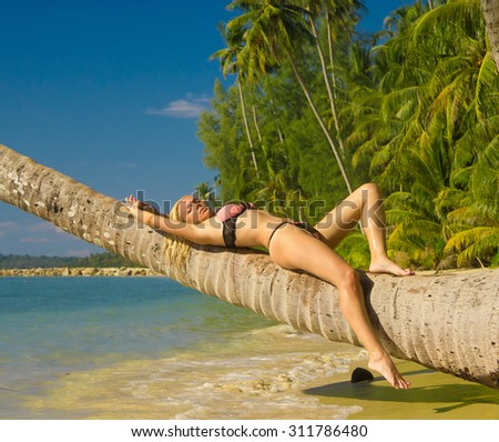 In a Coconut Grove Exotic Hideaway  - stock photo