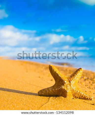 In a Sunlit Space Under the Sun - stock photo