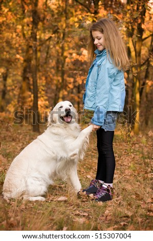 In autumn forest meadow pretty little girl with her cute golden retriever engaged in training. The dog gives paw. humility and devotion.
