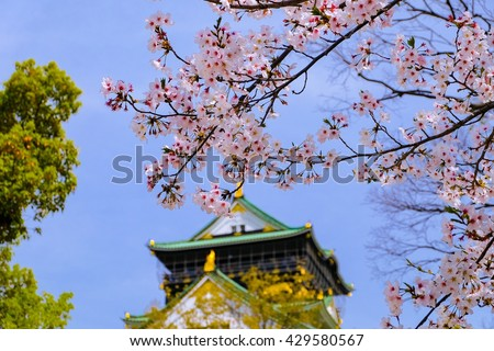 In front of the door enter to Osaka castle. Beautiful full blooming sakura tree with soft focus of Osaka castle. Travel to Japan on spring time