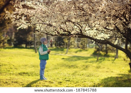 in nature in a flowering garden a little boy in a blue shirt and hat
