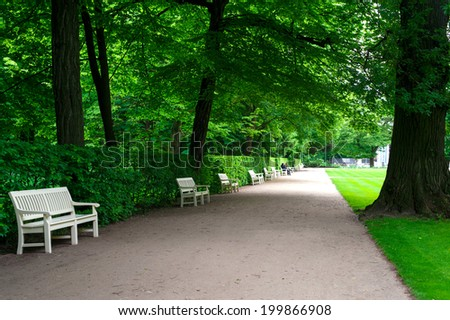 In shadow of trees. Wide alley with white benches in green summer Lazienki park with old big trees. Poland. - stock photo