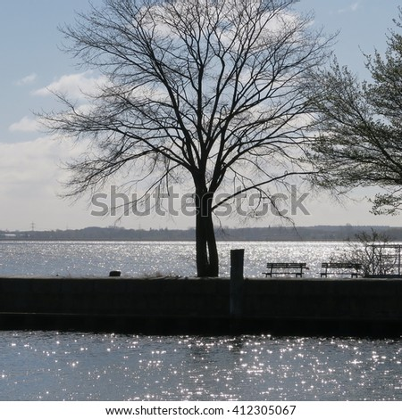in spring at the port of greifswald at the baltic in Germany