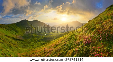 In summer mountains - stock photo