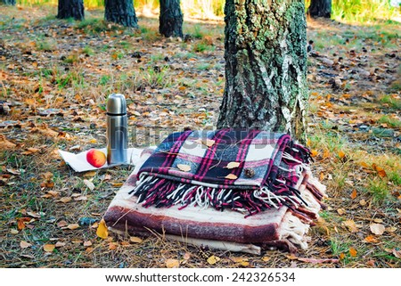 In the autumn forest near the tree, there are two blanket for rest, a thermos of coffee and an Apple.. - stock photo