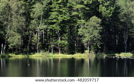 In the clear water of a forest lake reflects the sky, mountain, forest and clouds. Photo partially tinted.