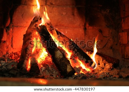 in the fireplace burning birch firewood