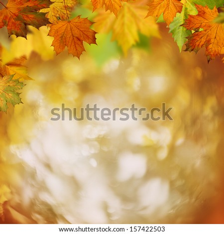 In the forest, abstract autumnal backgrounds for your design