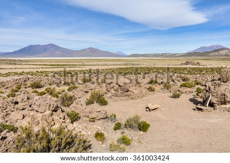 in the High Andean Plateau desert in Bolivia