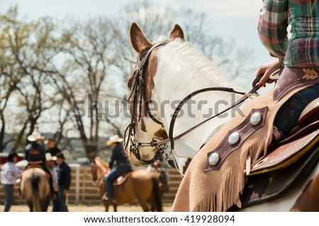 In the saddle horse on Western race, beautiful paint horse in a barrel racing event at a rodeo in Mitrov, Czech republic - stock photo