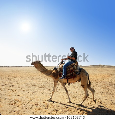 in the summer holiday on a camel ride