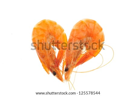 In the white background of the shrimp