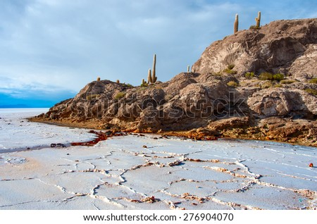 Incahuasi island in Salar de Uyuni, Bolivia - stock photo