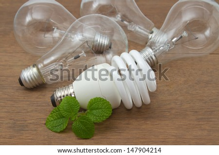 Incandescent and Compact fluorescent , concept energy-saving - stock photo