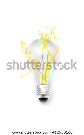 Incandescent light bulb isolated over a white background.