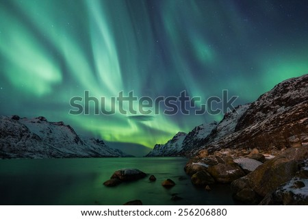 Incredible Aurora Borealis activity above the coast in Norway - stock photo