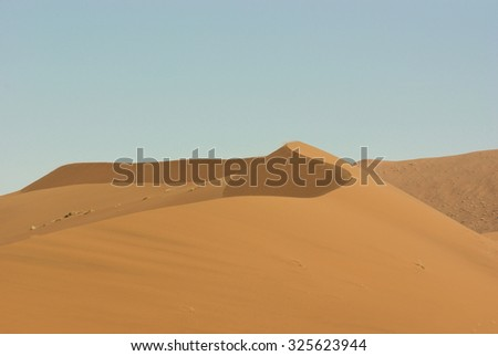 Incredible huge dunes of sand located in Sossusvlei in Namibia within the Namid desert