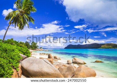 incredible nature of Seychelles islands - stock photo