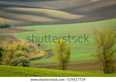 Incredible patterns on waved fields of South Moravia called the Moravian Tuscany, green and brown autumn colors. Czechia.