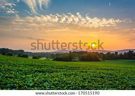 Incredible sunset sky over the Piegon Hills and farm fields, near Spring Grove, Pennsylvania. - stock photo