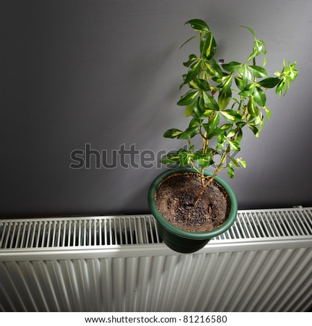 independent home heating concept - stock photo