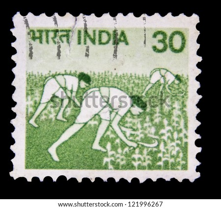 "INDIA - CIRCA 1979: A stamp printed in India shows Women in Rice Field, without inscription, from the series ""Crops and Farming"", circa 1979"