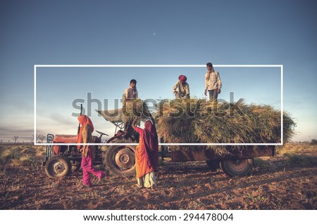 India Family Farming Harvesting Crops Concept - stock photo