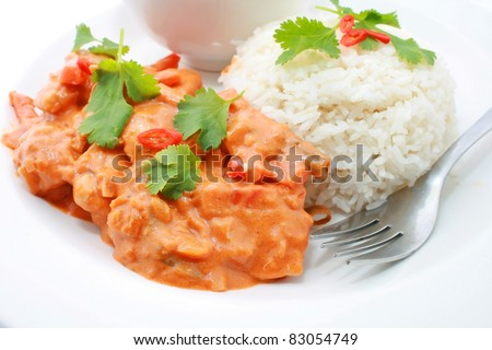 Indian butter chicken on rice and salad - stock photo