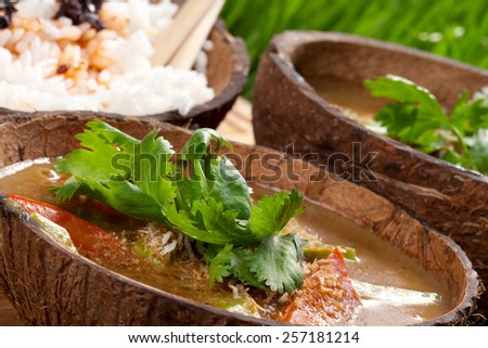 Indian curry served with rice - stock photo