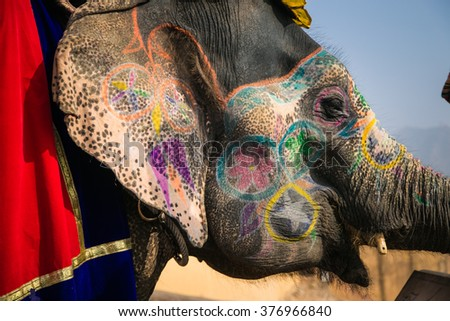 Indian elephant in a festive coloration - stock photo