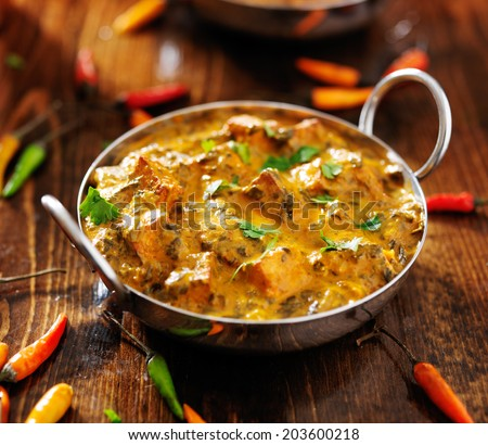 indian food - saag paneer curry dish - stock photo