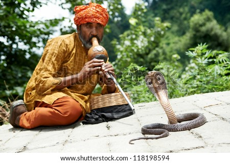 Indian Snake charmer adult man in turban playing on musical instrument before snake at a basket - stock photo