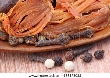 Indian spices with a wooden spoon
