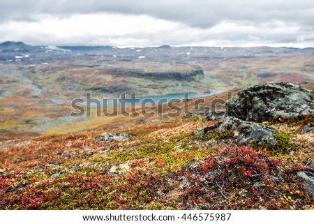 Indian Summer in the Mountains of Northern Sweden
